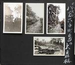 alb19-24.jpg